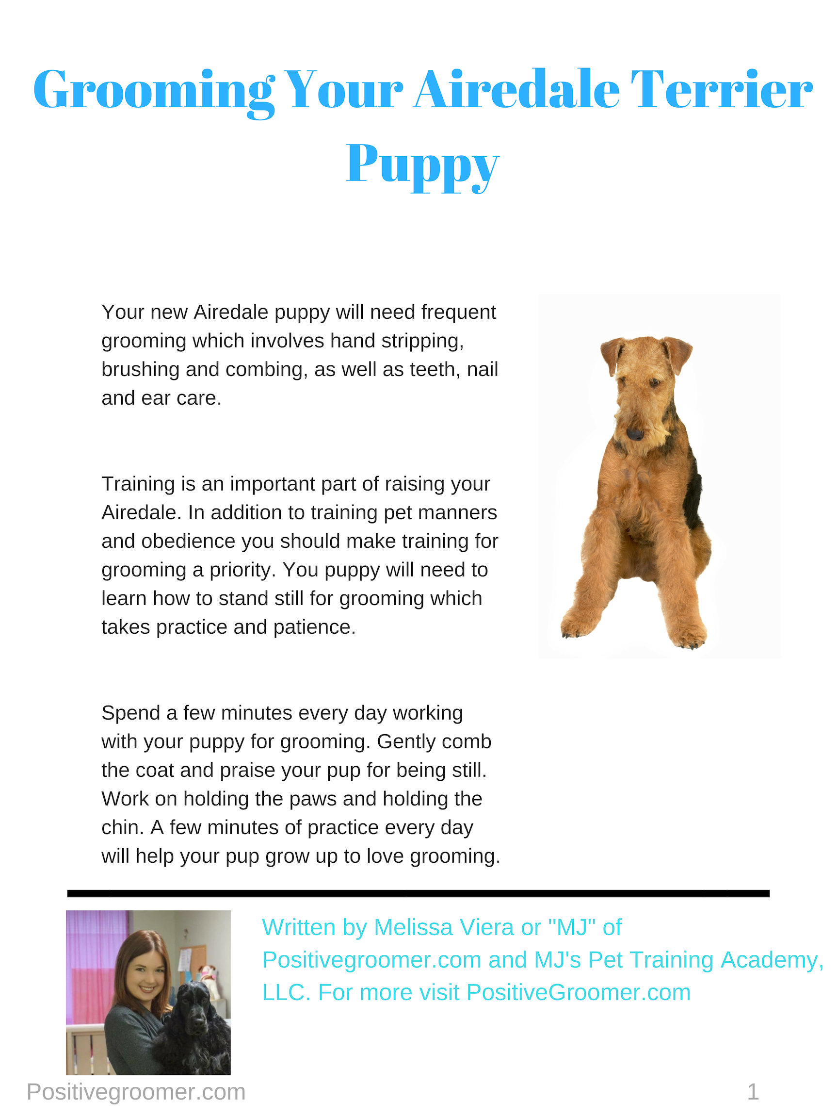 Airedale Terrier Positive Groomer