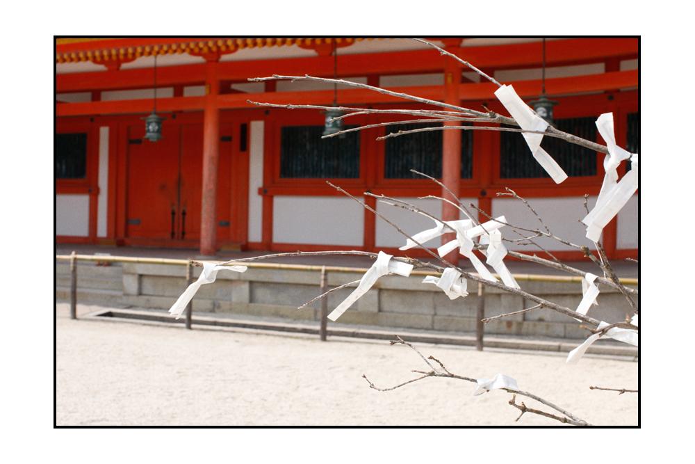 KYOTO_SLIDE11.jpg