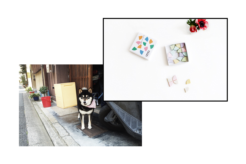 KYOTO_SLIDE19.jpg