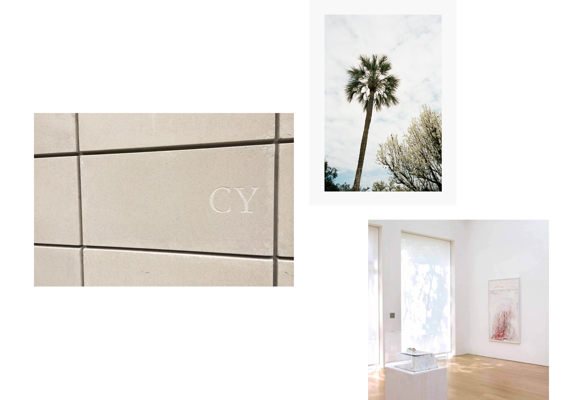 1. Cy Twombly Gallery facade, iPhone photo by me.     2. Palm Tree in front of The Rothko Chapel, film photo by me.      3.