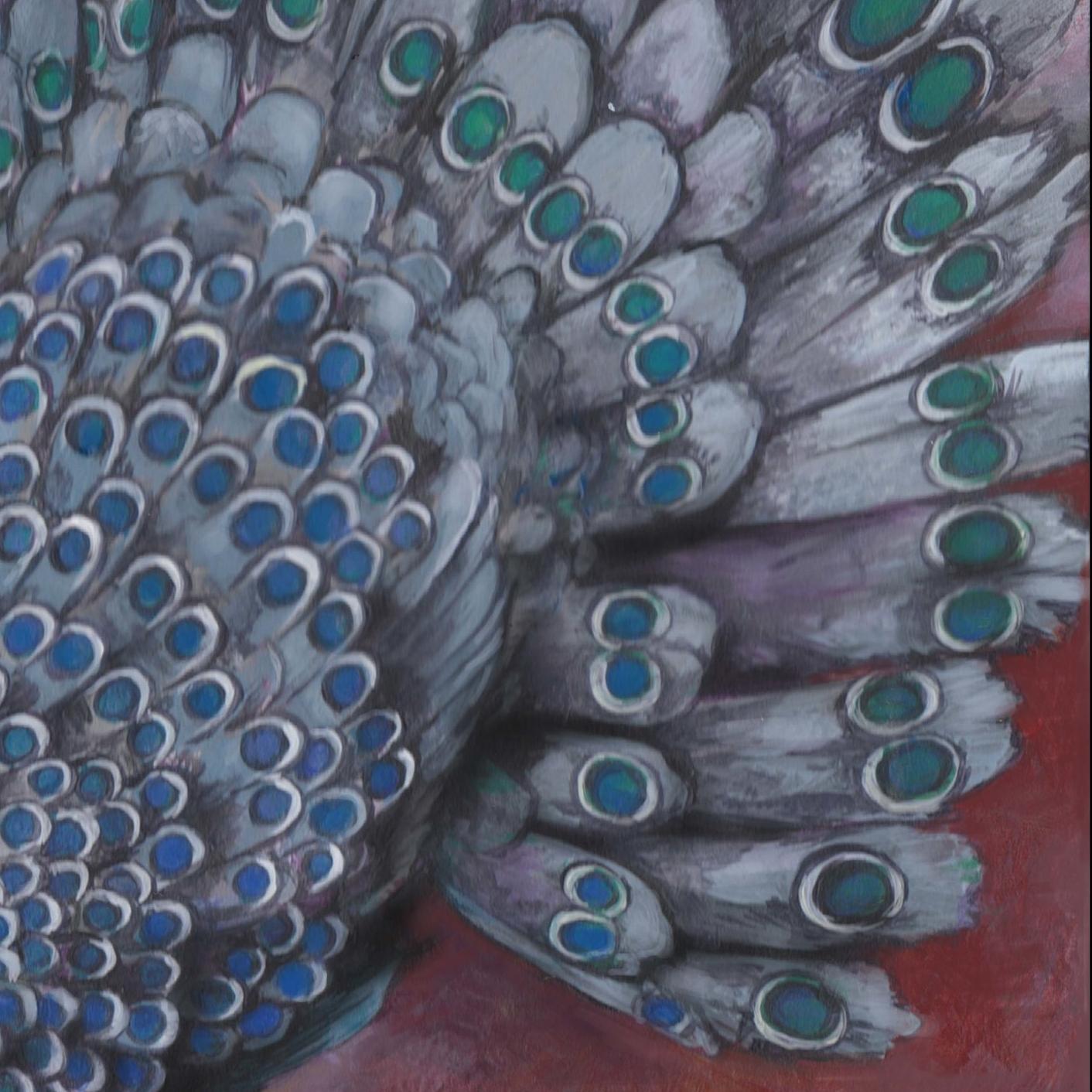 7 Grey Peacock Pheasant.jpg