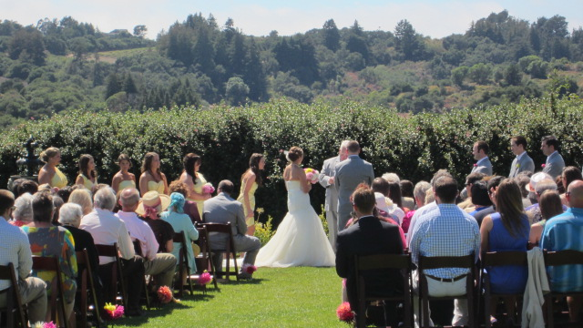 Beautiful Corralitos hills background for this July wedding