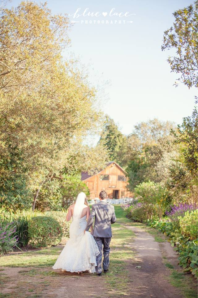 RS-up-path.jpg