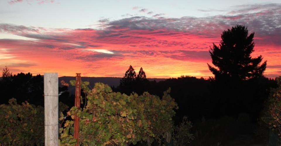sunset-960x500.jpg