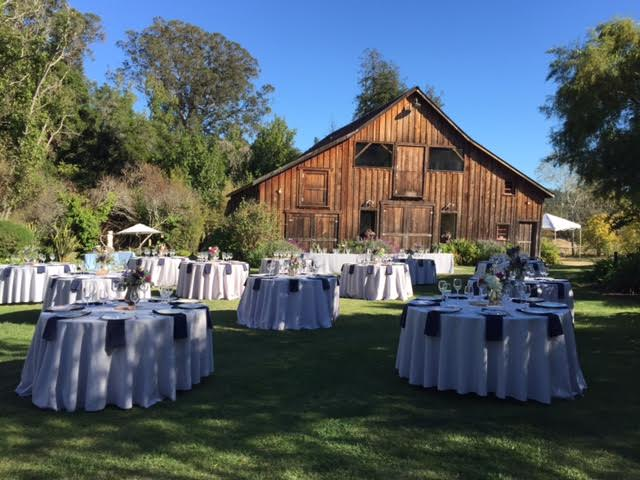 Barn Wedding.jpeg