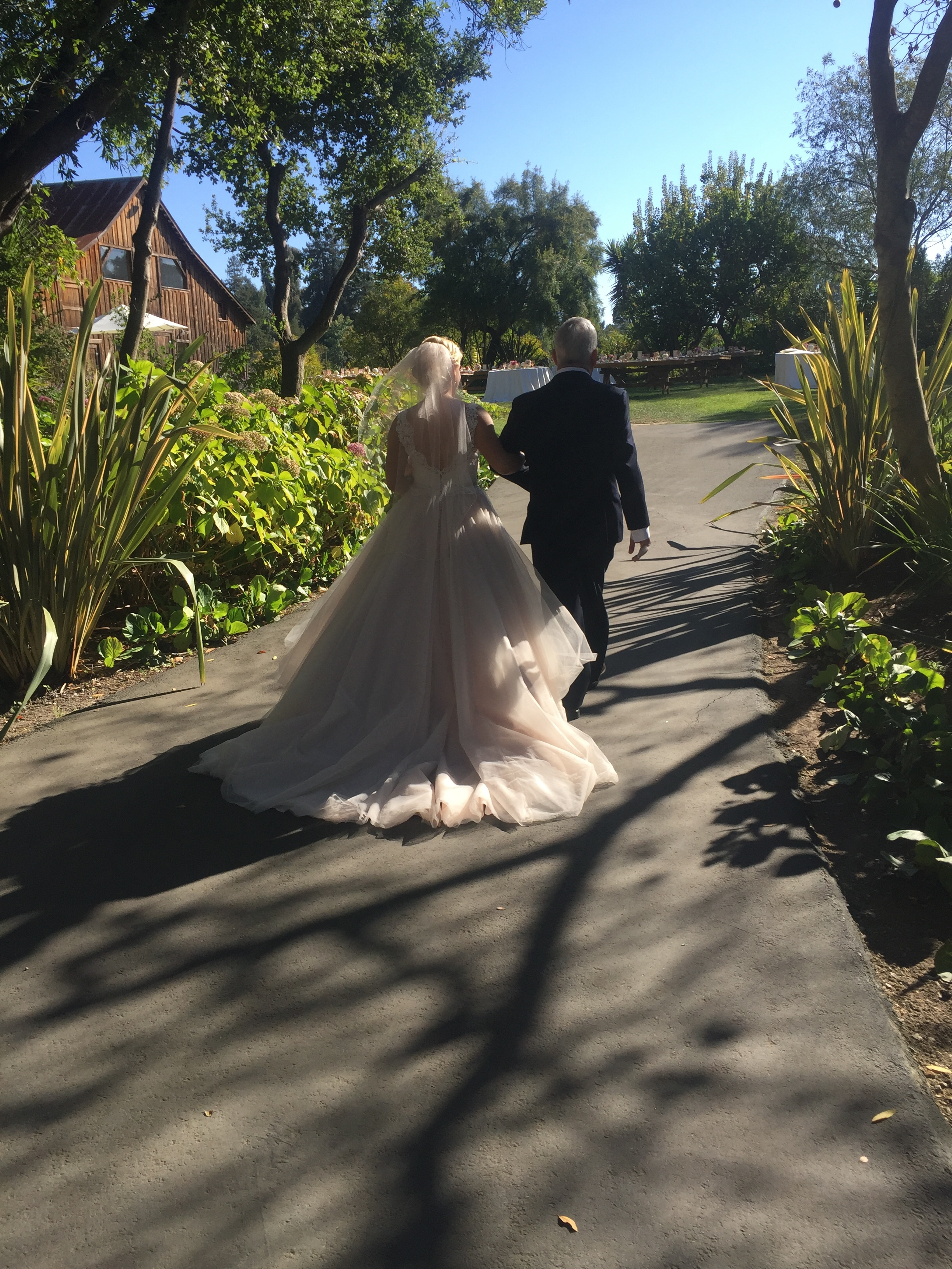 Santa Cruz Wedding Planner.JPG