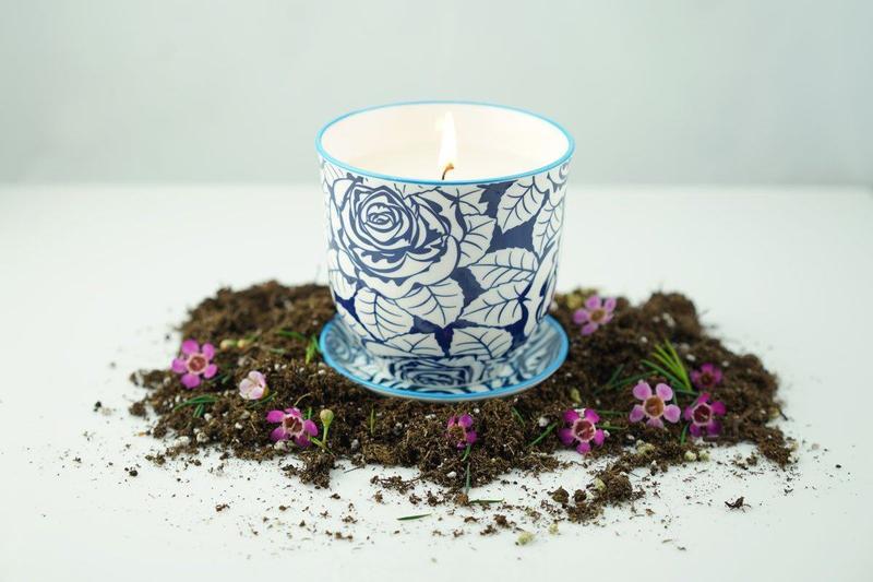 1_Blue-Candle_Dirt-Flowers1_a98f8e91-516f-4a12-a56b-5b4777dc2142_800x.jpg