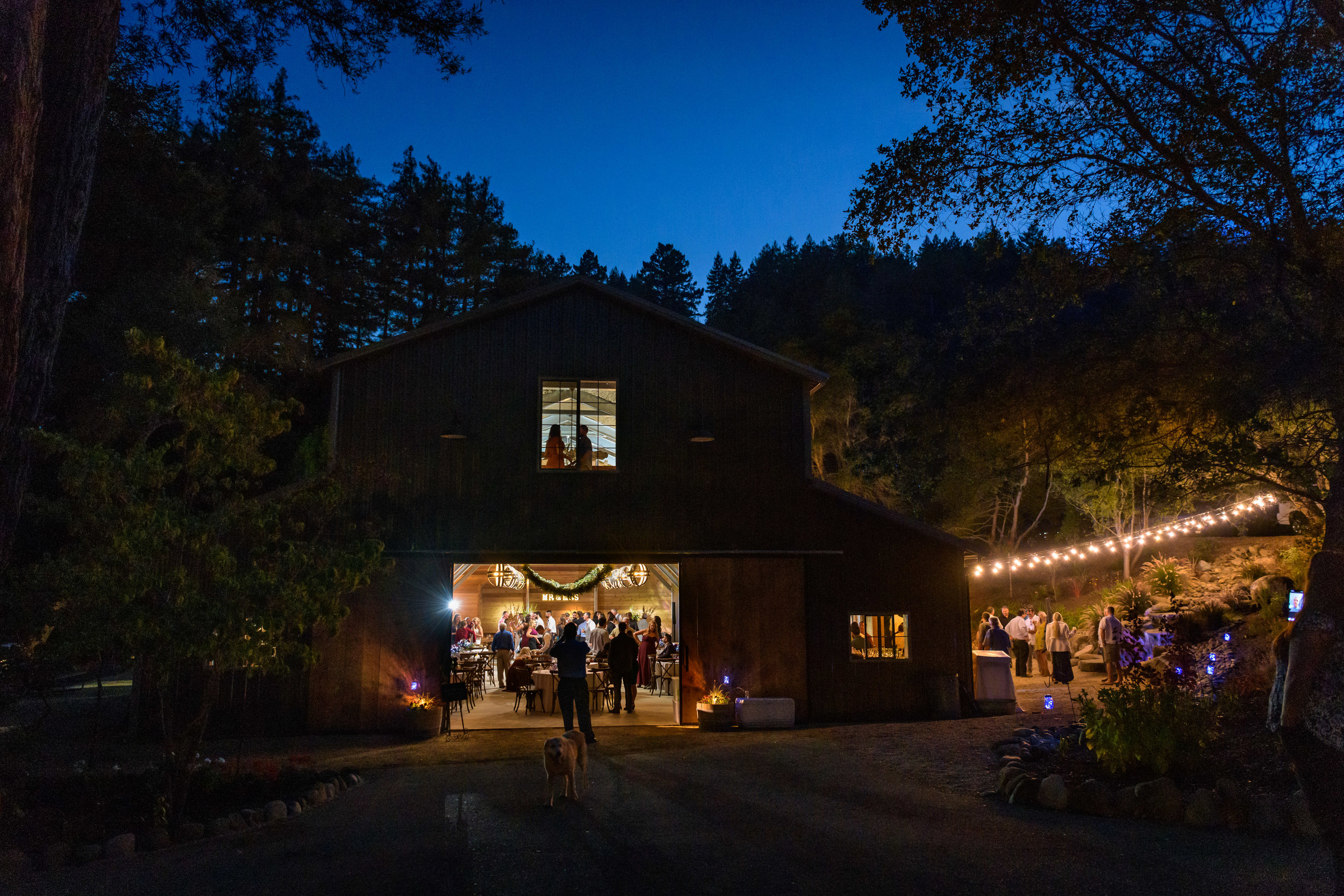 9679_Maddie_and_Nick_River_House_Ben_Lomond_Wedding_Photography.jpg