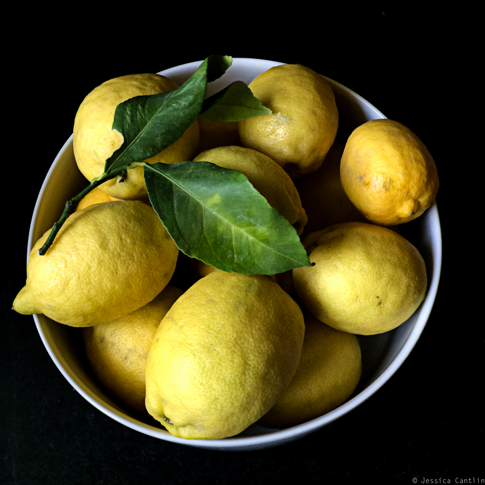 The Lemon Bounty