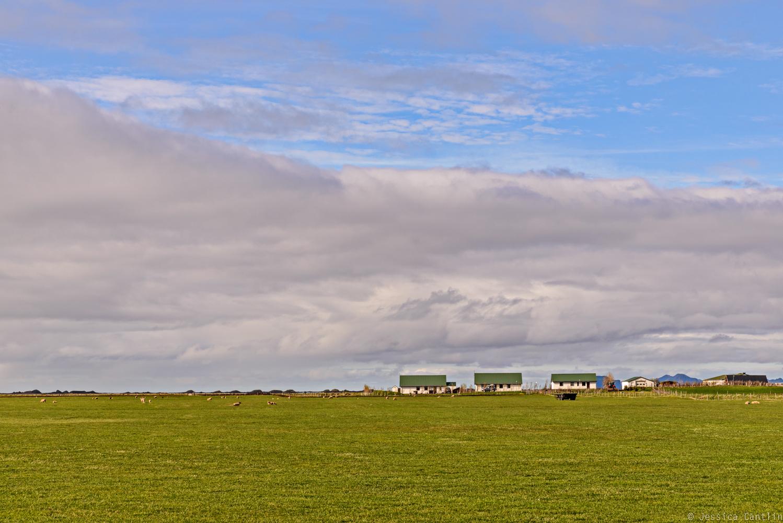 Farm in South Iceland