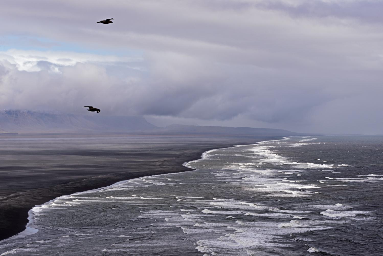 Black sand beach from Ingólfshöfði