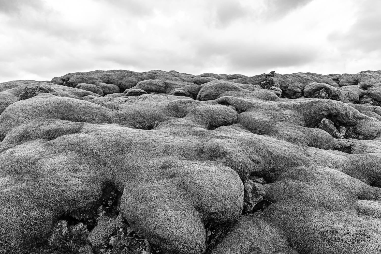 Mossy Volcanic Rocks