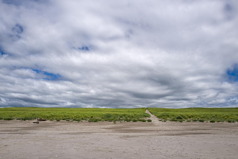 Dunes at Gearhart Beach