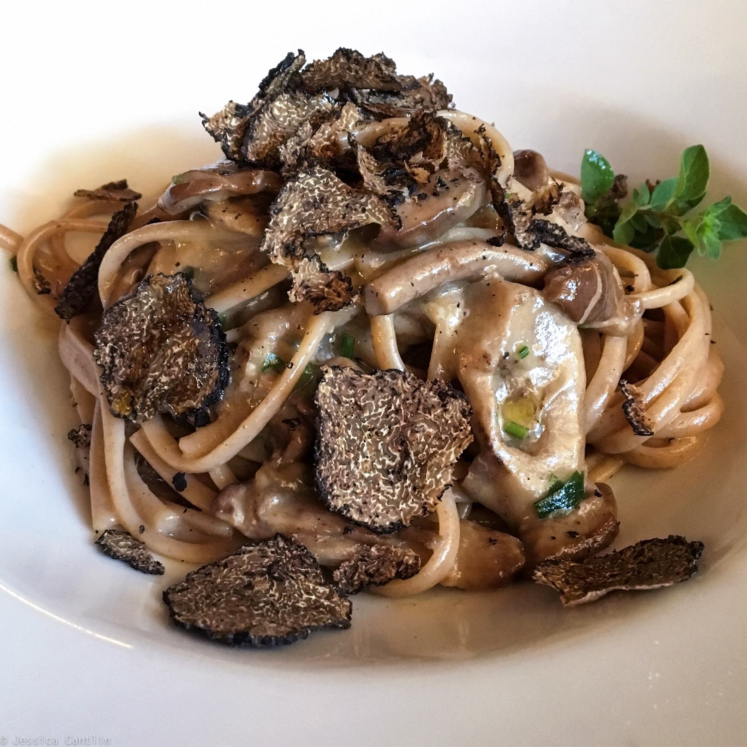 Porcini and Truffles at Al Fogher