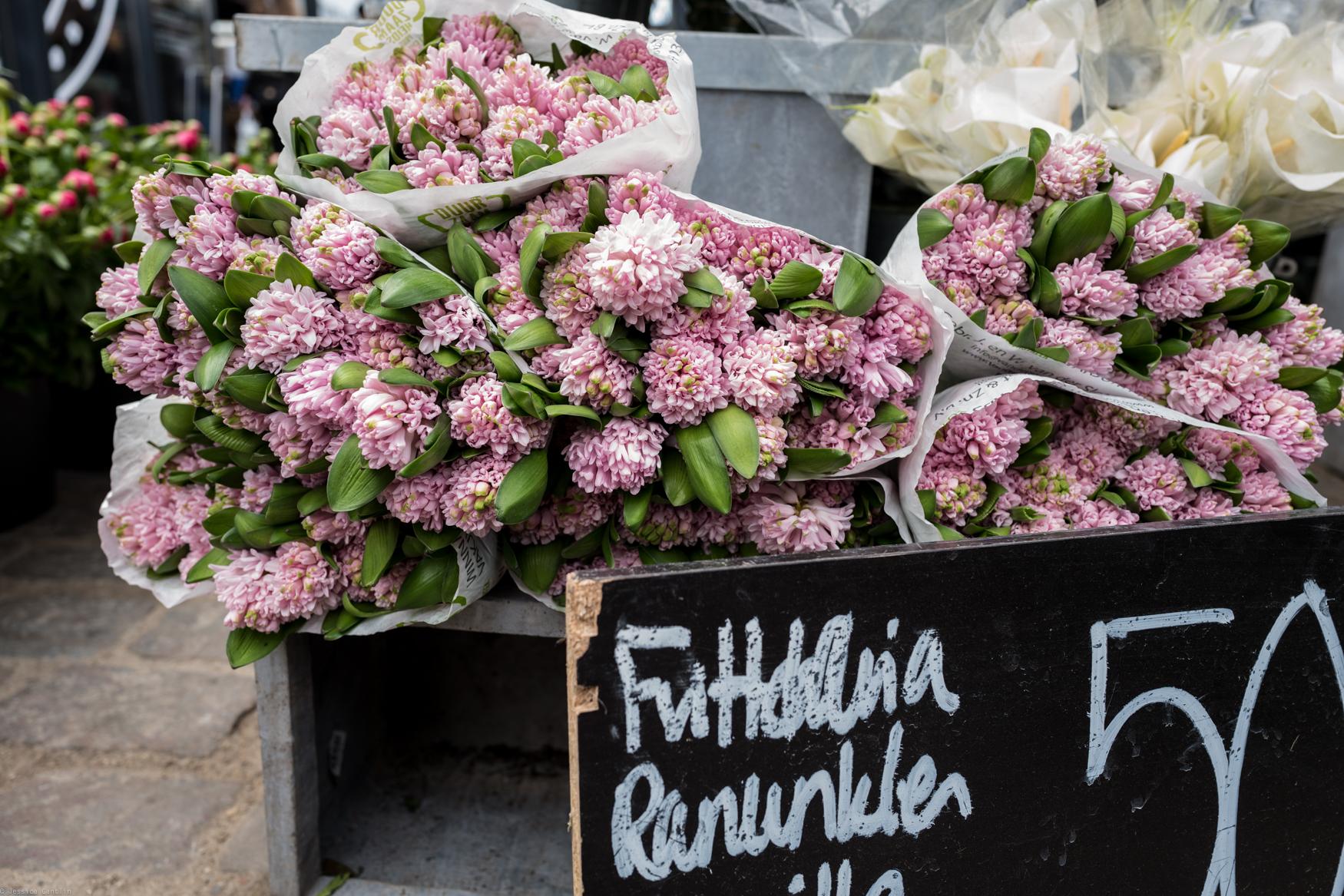 Danish Blooms