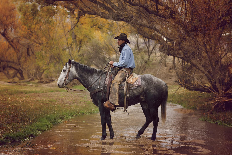 AC9A1020 Arizona Cowboy.jpg