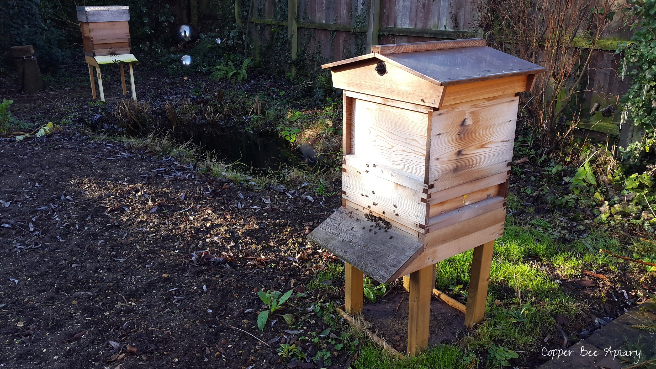 Copper Hive and Pond Hive