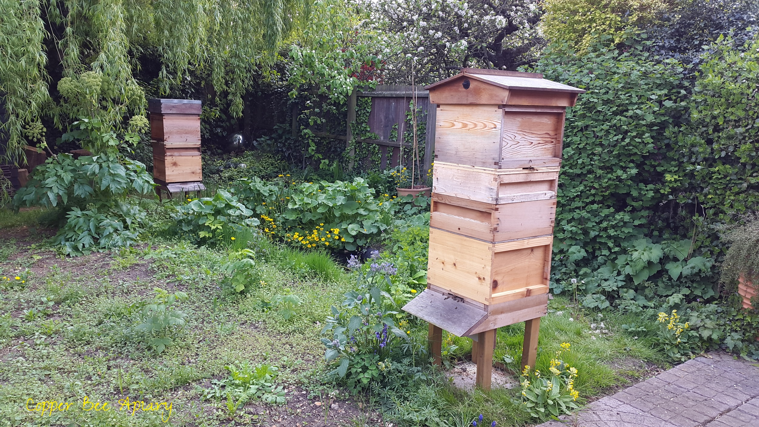Vertically split Copper Hive and Pond Hive