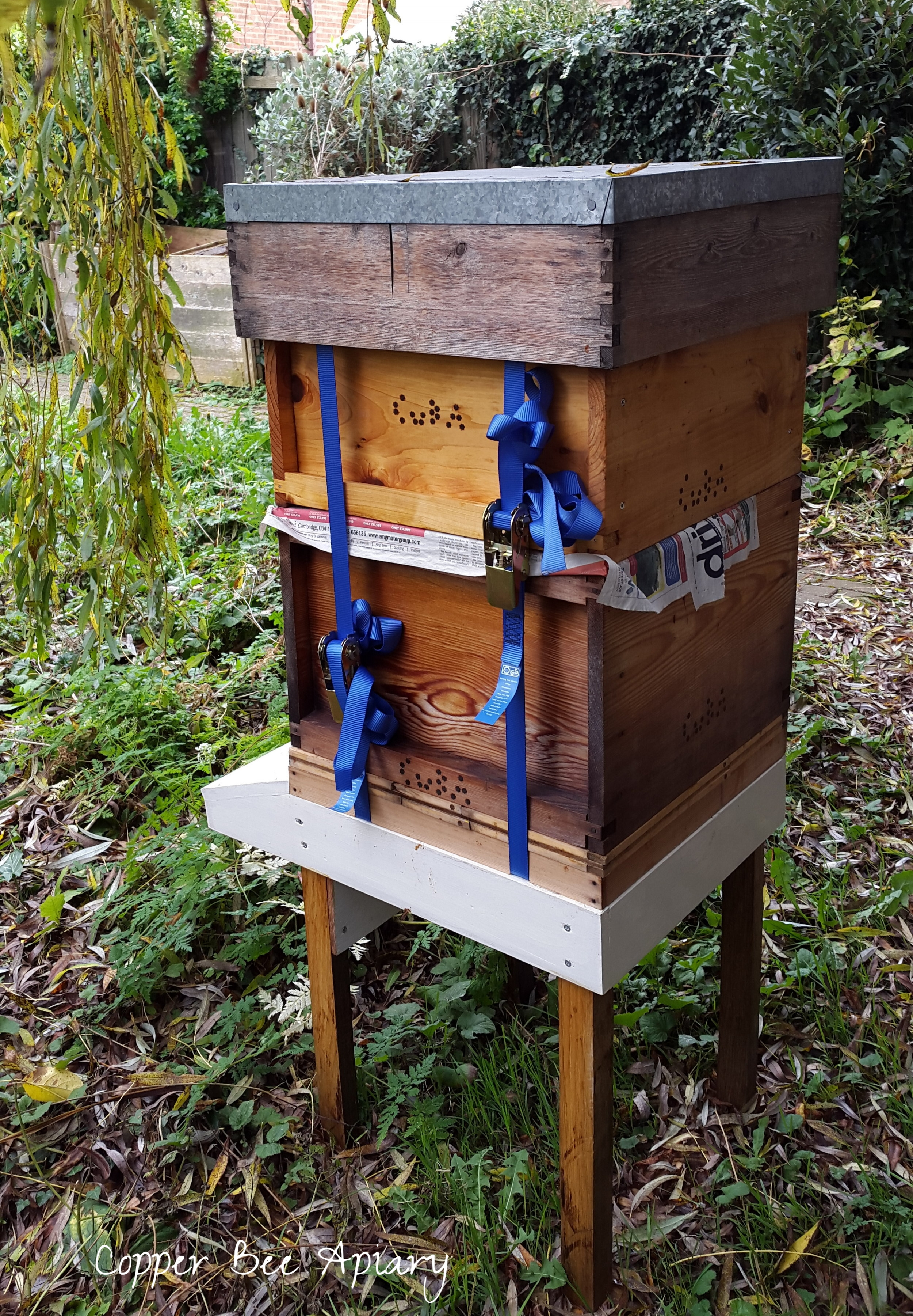 Pond Hive strapped up