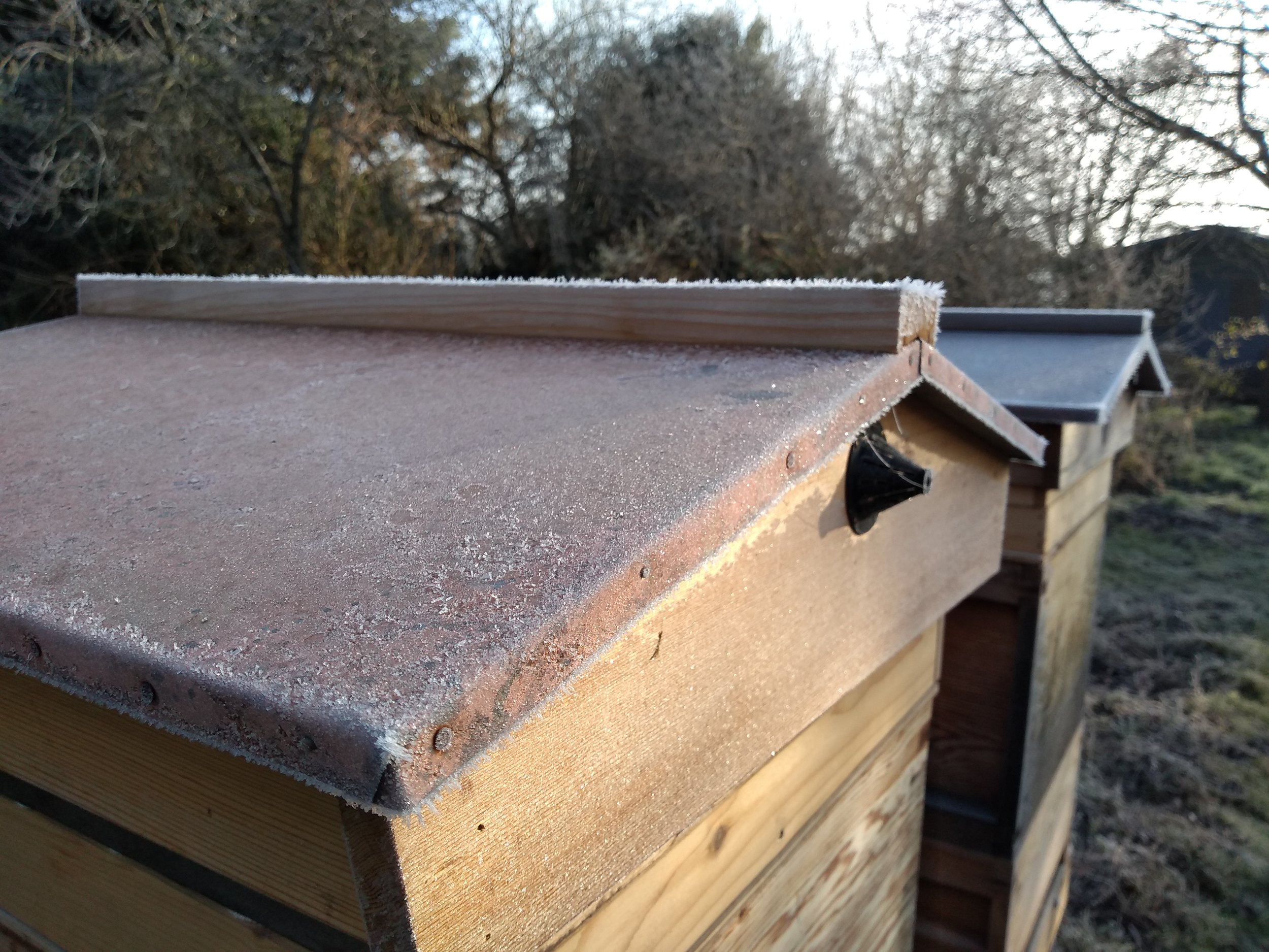 Frosty hive rooves