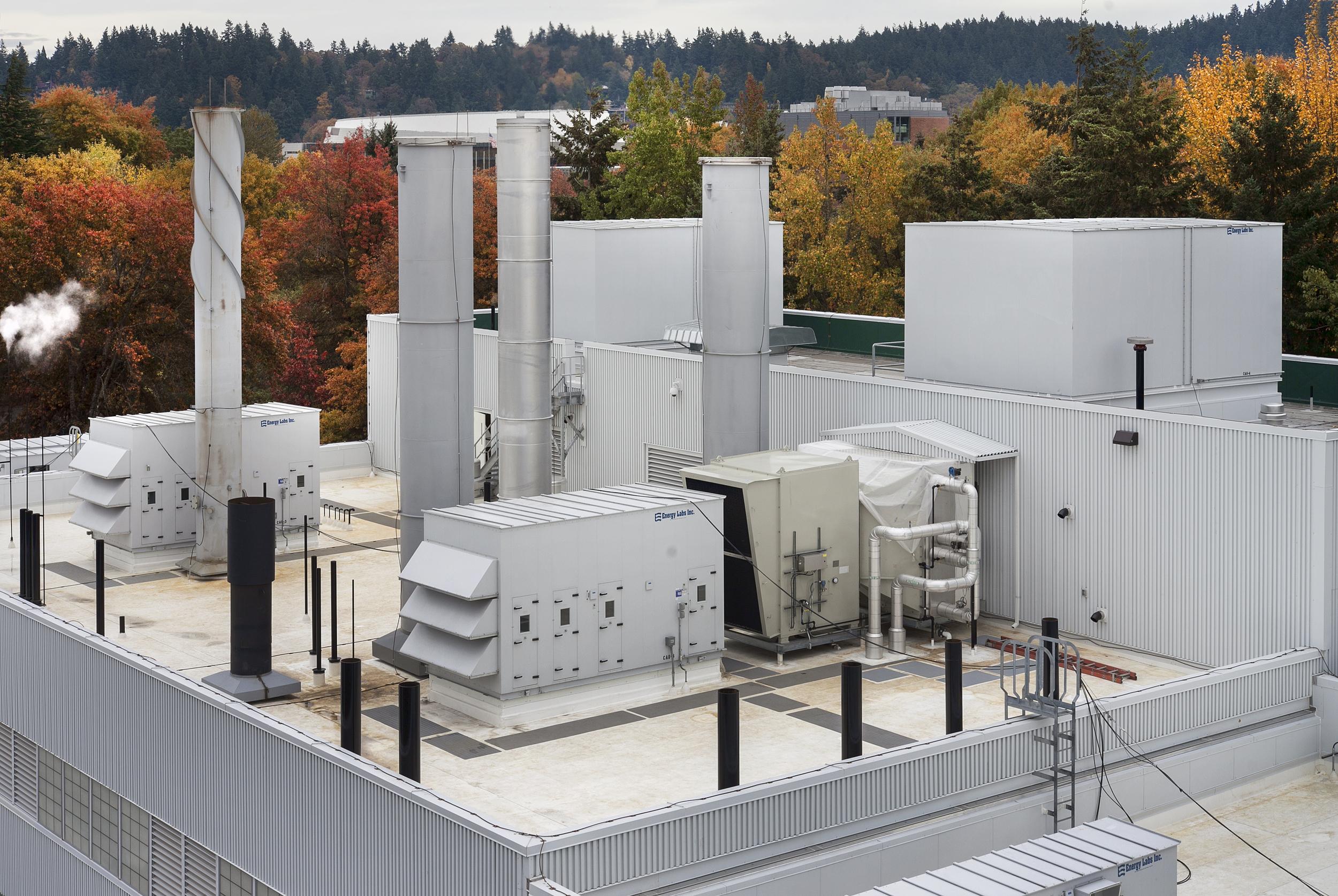 U of O Power Plant  Wood Harbinger