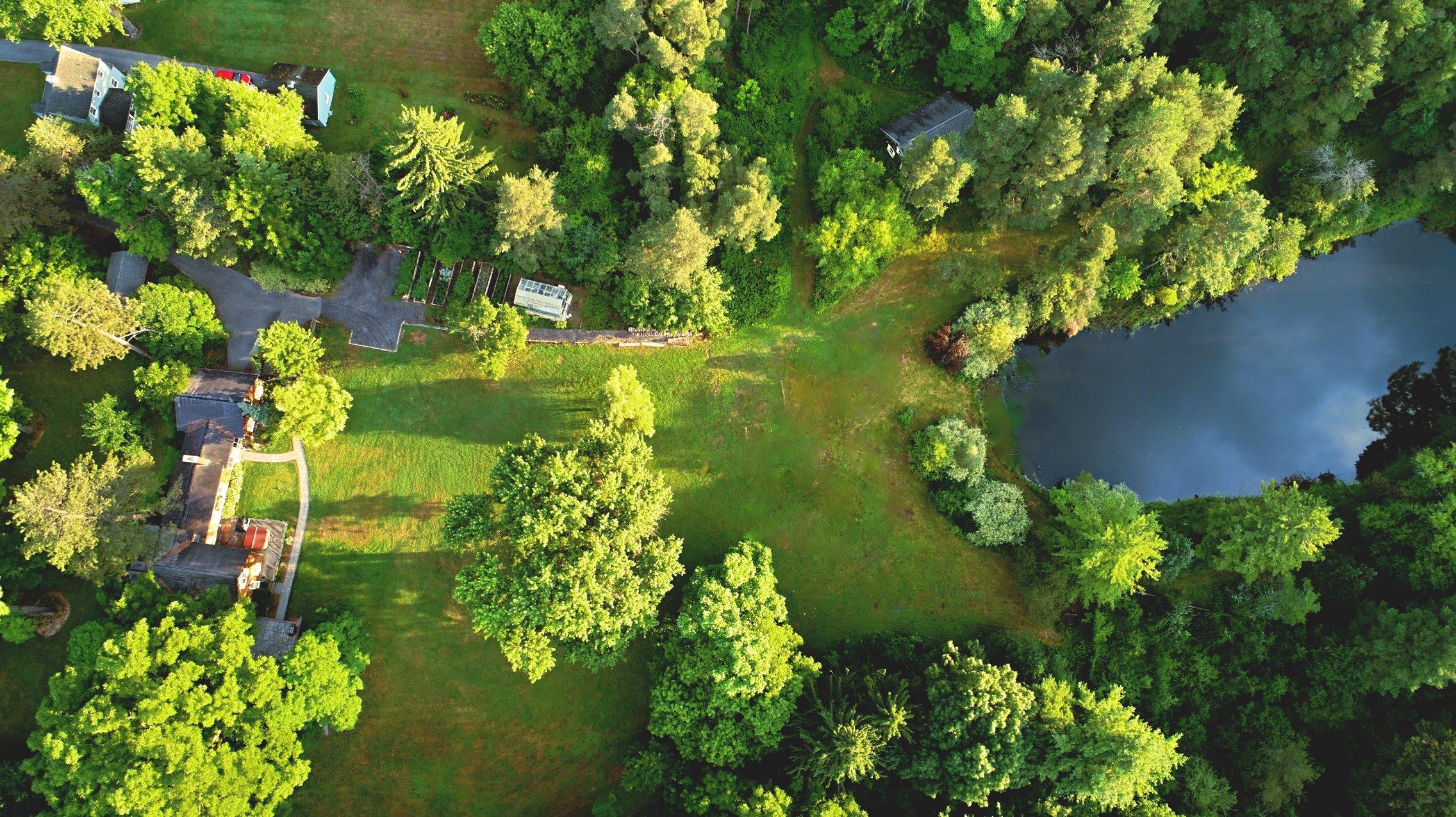 overhead directly house pond (Michael DeRosa).jpg