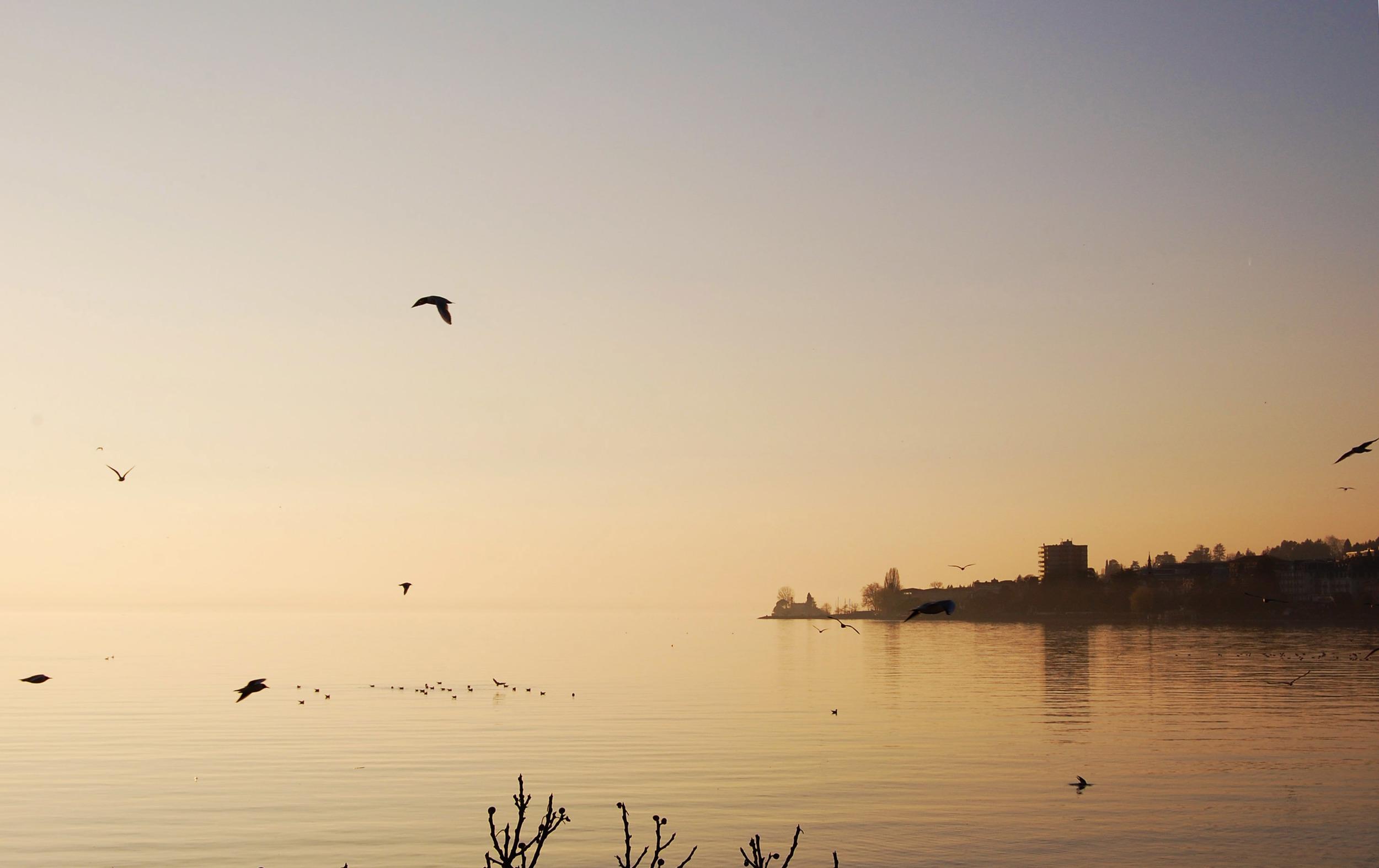 Switzerland_sunset_Lake Geneva