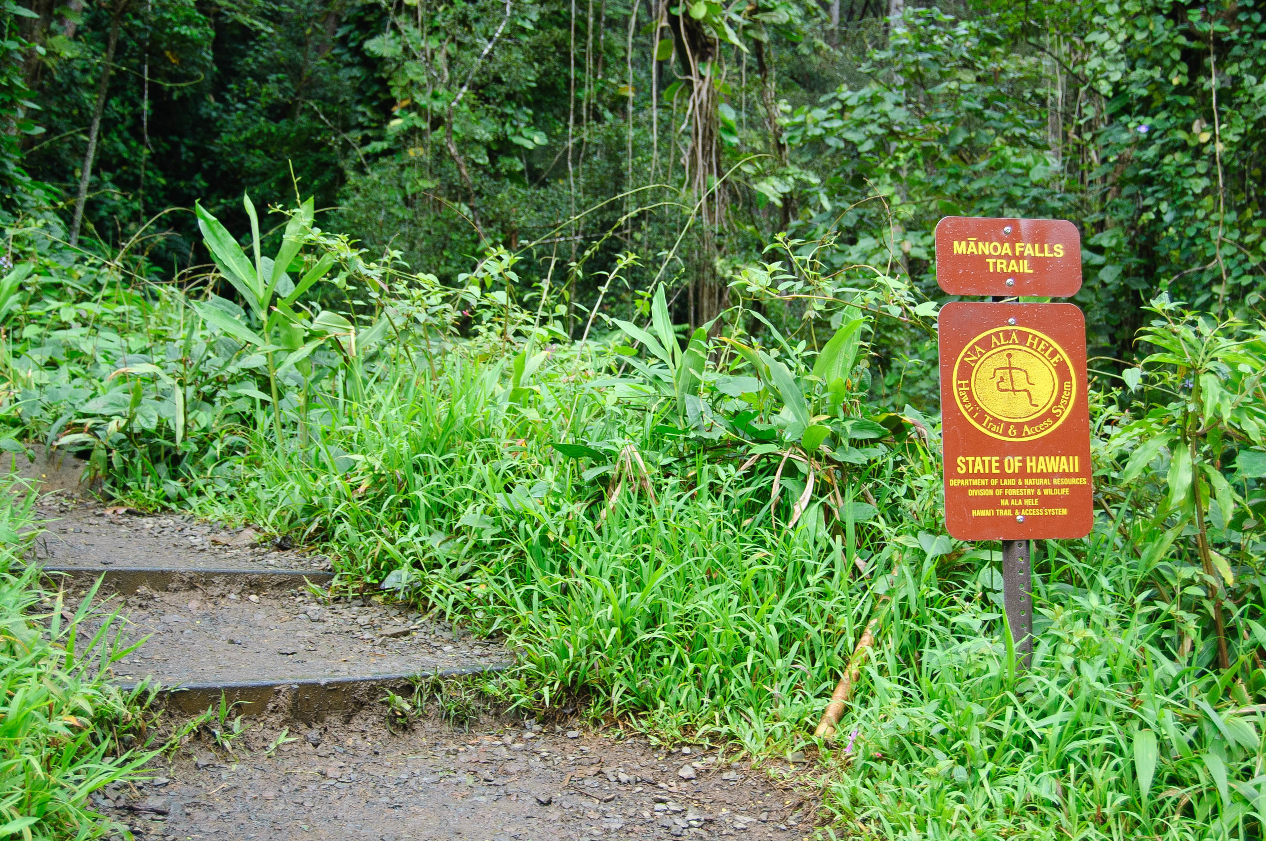 ManoaFalls_Hawaii_Entrance
