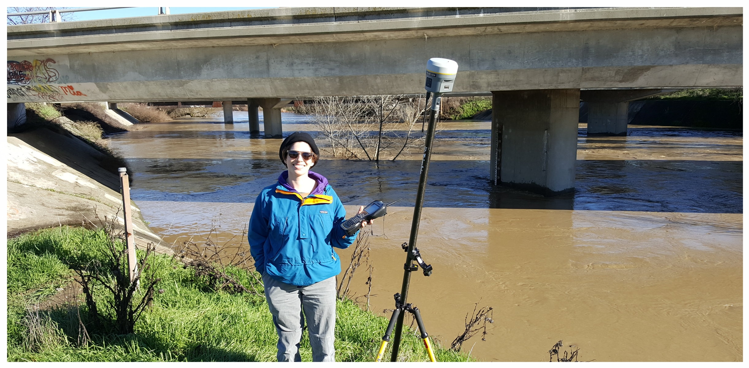 FlowWest's Anna Constantino on Cache Creek at I-5, just below flood stage!
