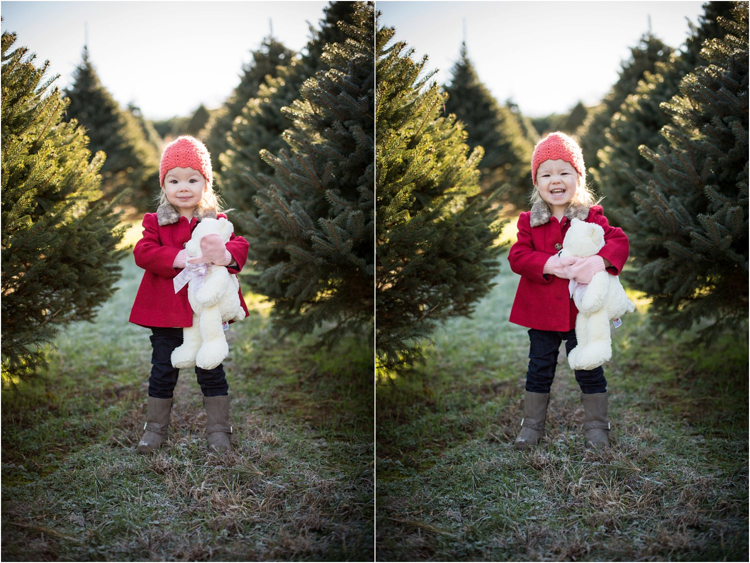 Moose_Apple_Chrismas_Tree_Farm_Family_Portraits_0004.jpg