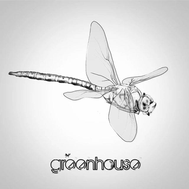 Greenhouse EP out now! https://greenhouseband.bandcamp.com/album/greenhouse Die sehr schöne Libelle kommt von @fraeulein.nebel , herzlichen Dank dafür!