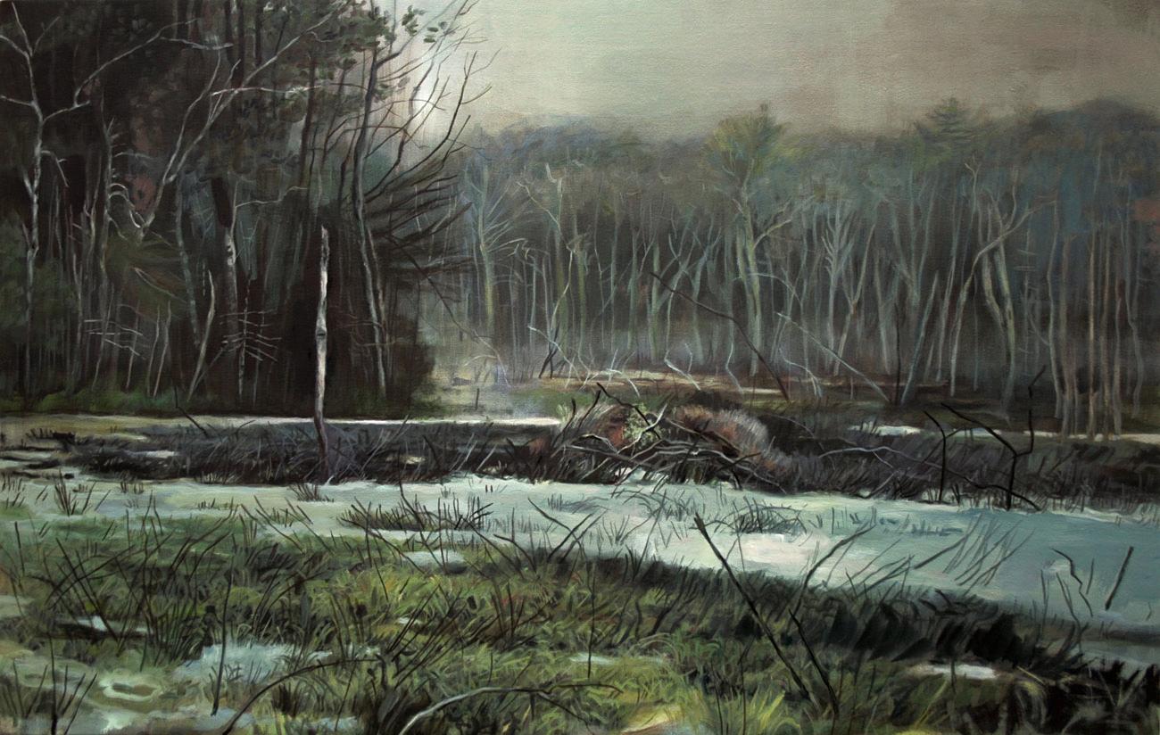 Dead Tree in a Bog