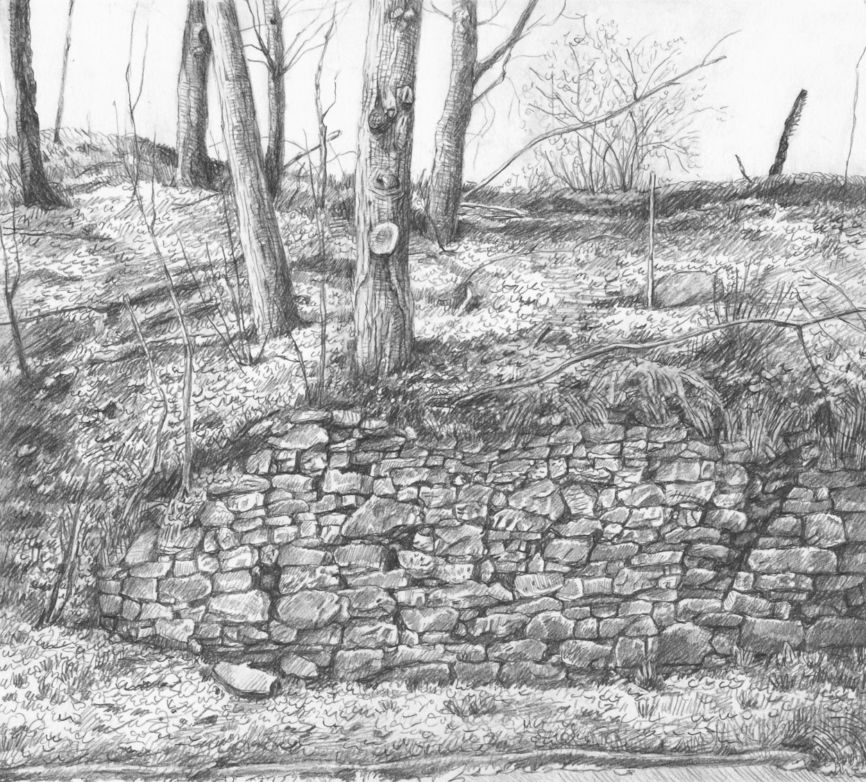Old Retaining Wall, Rondout Creek