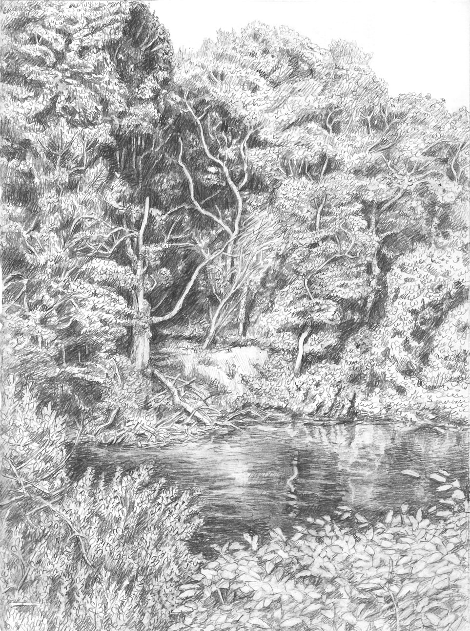 The Narrow River