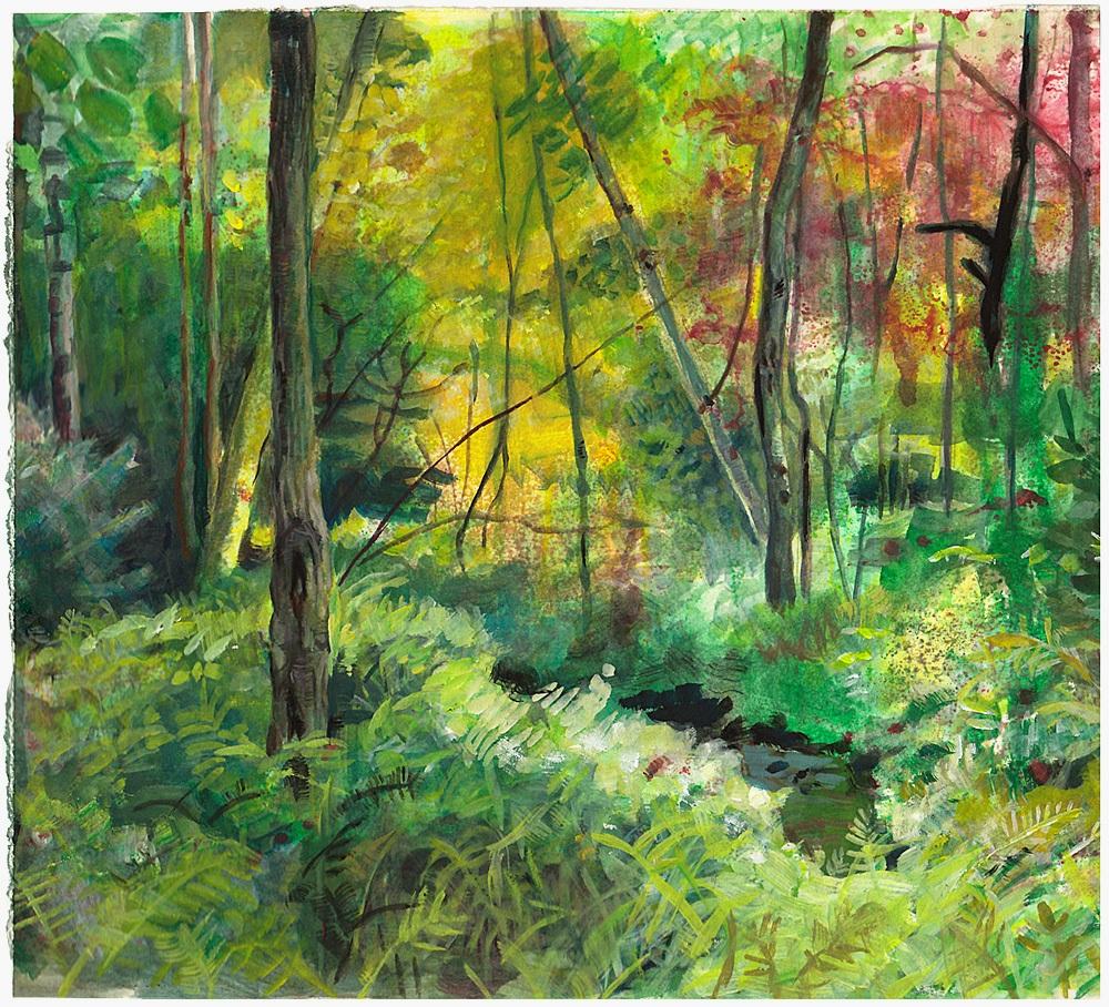 """Forest Interior"""