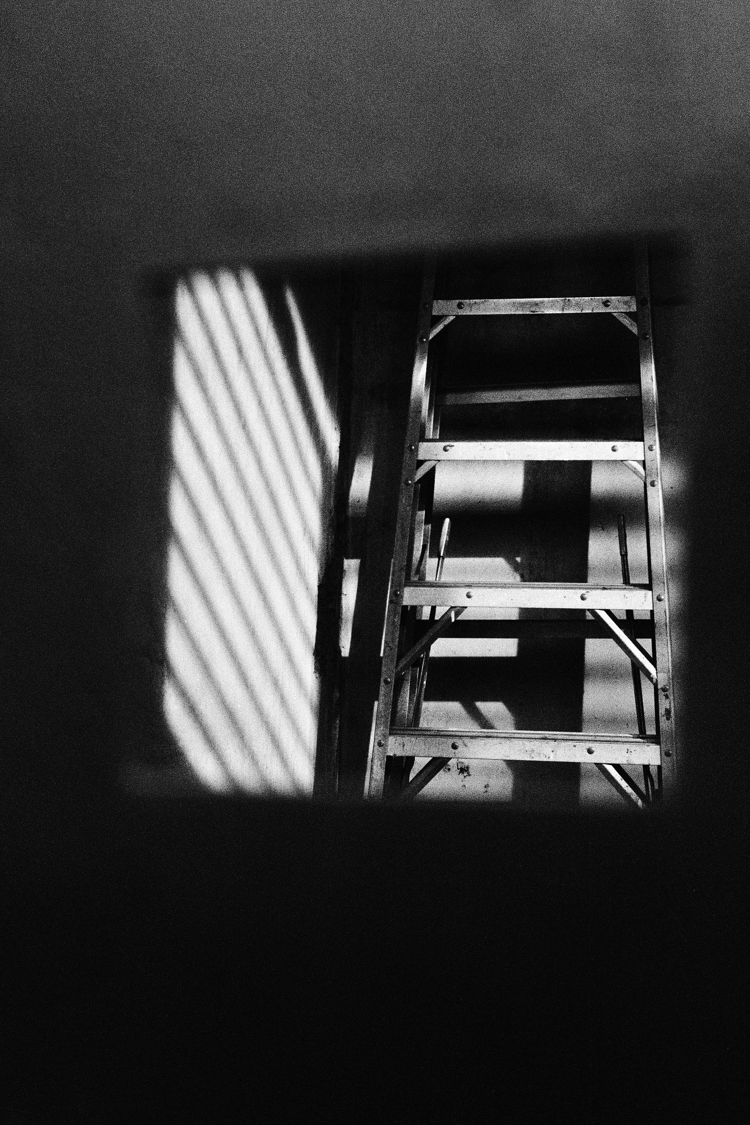 Ladder Shadow copy.jpg
