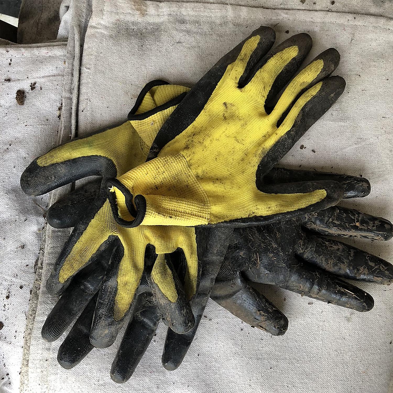 Gloves | Original Photo
