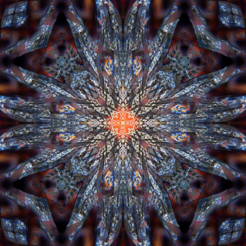 Shrooms | Starfire