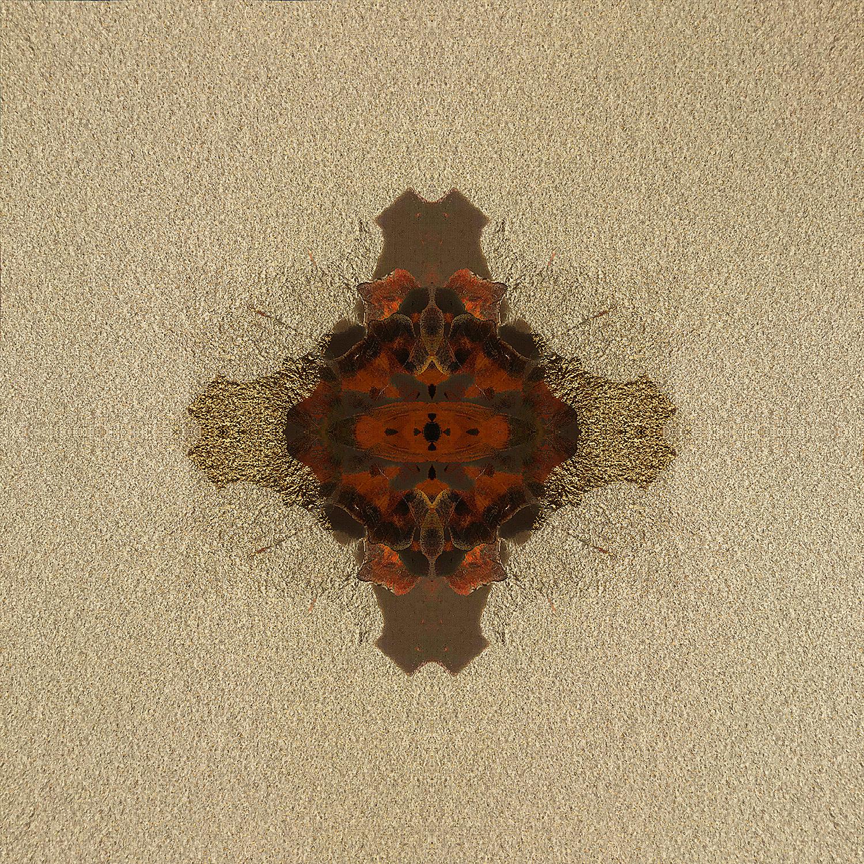 Fritillary | Gilt Shadows 1500.jpg