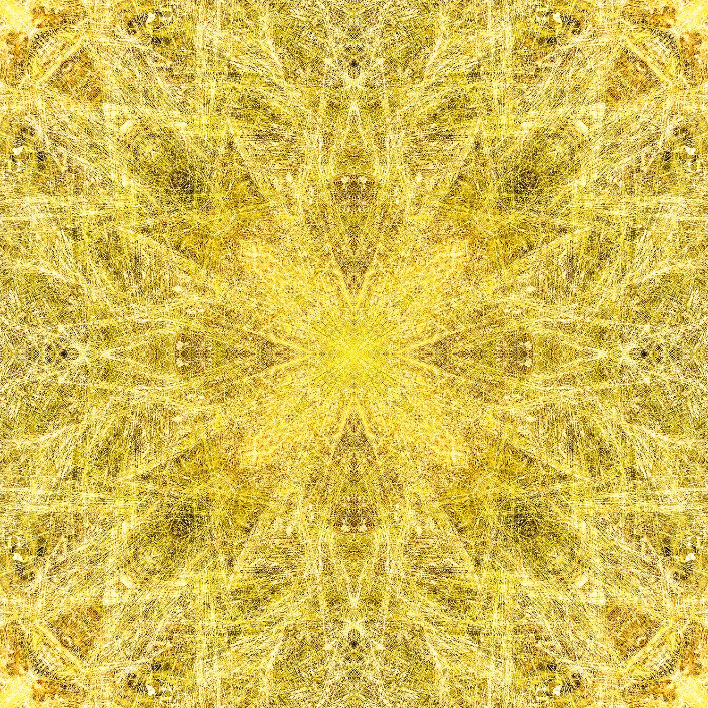 Maiden Grass | Master Webbing | 1500.jpg