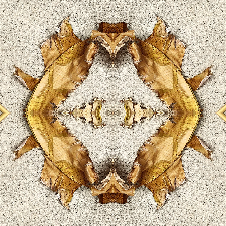 Banana Leaves | Folded Beginnings