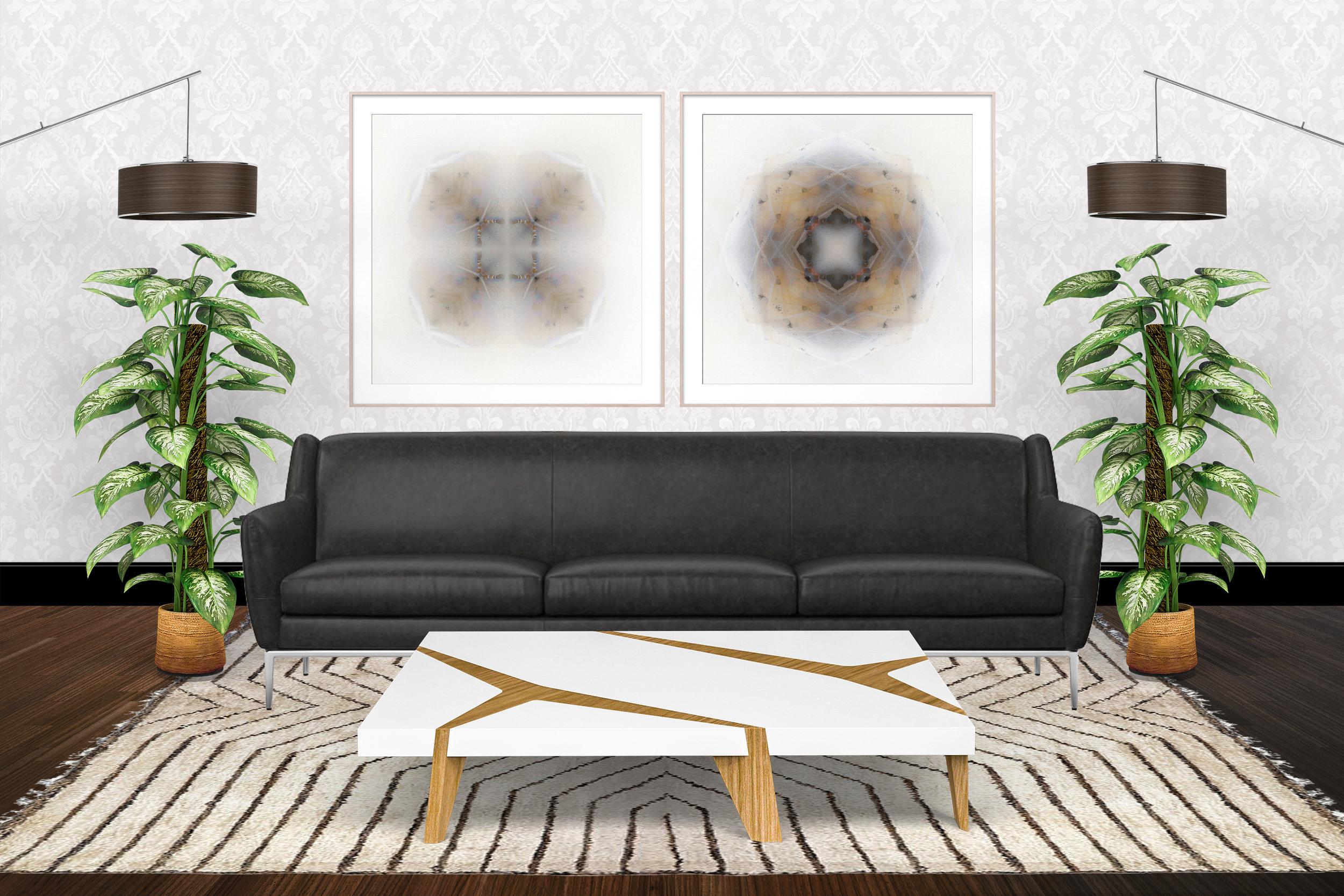 Large Framed Moth Prints Modern.jpg