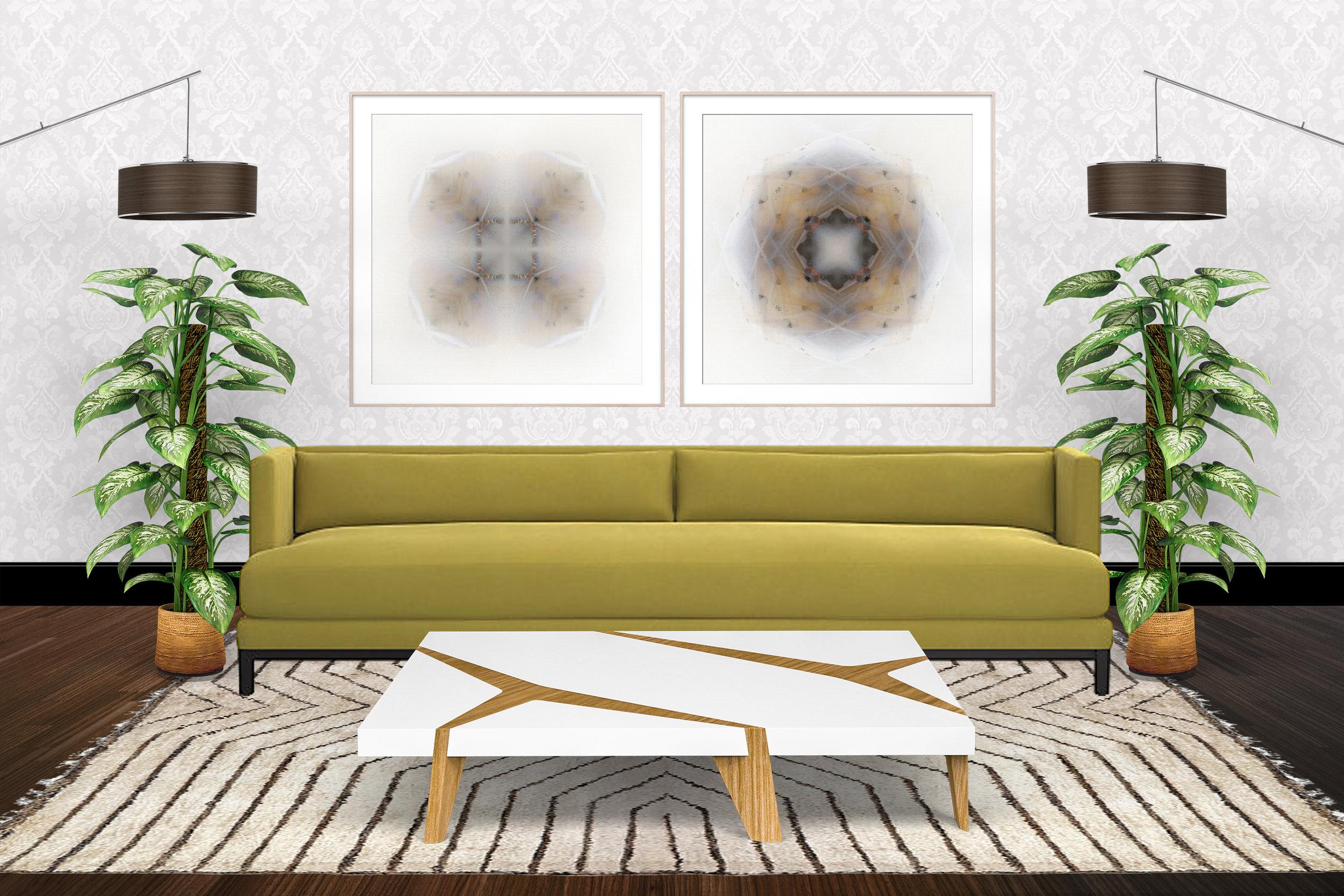 Large Framed Moth Prints.jpg