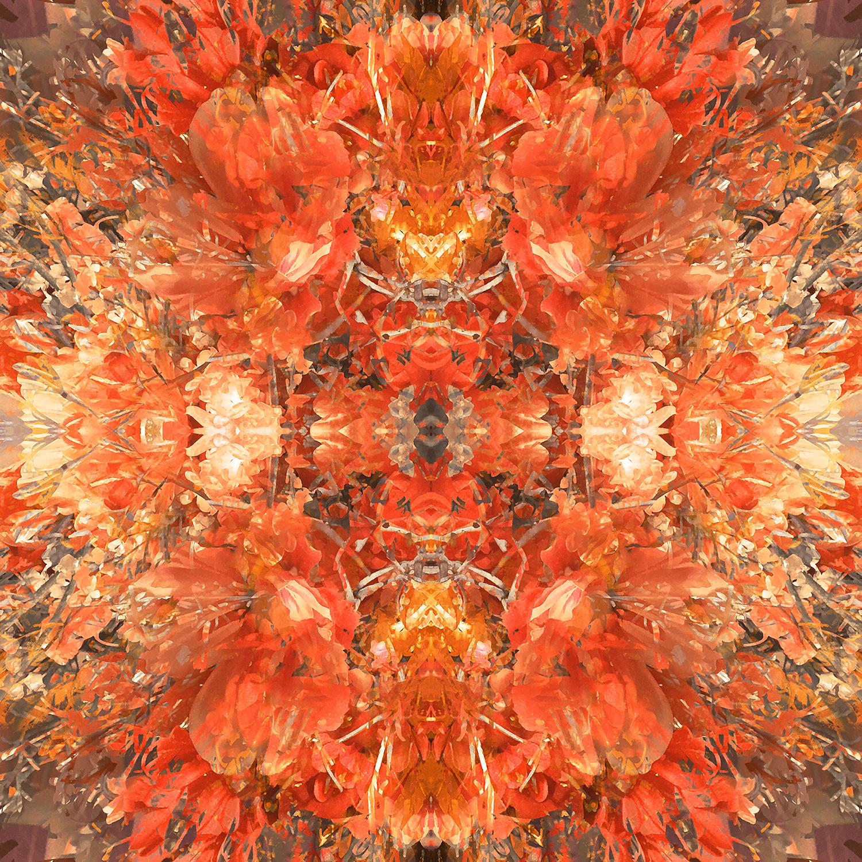 Bouquet | Fall Celebration