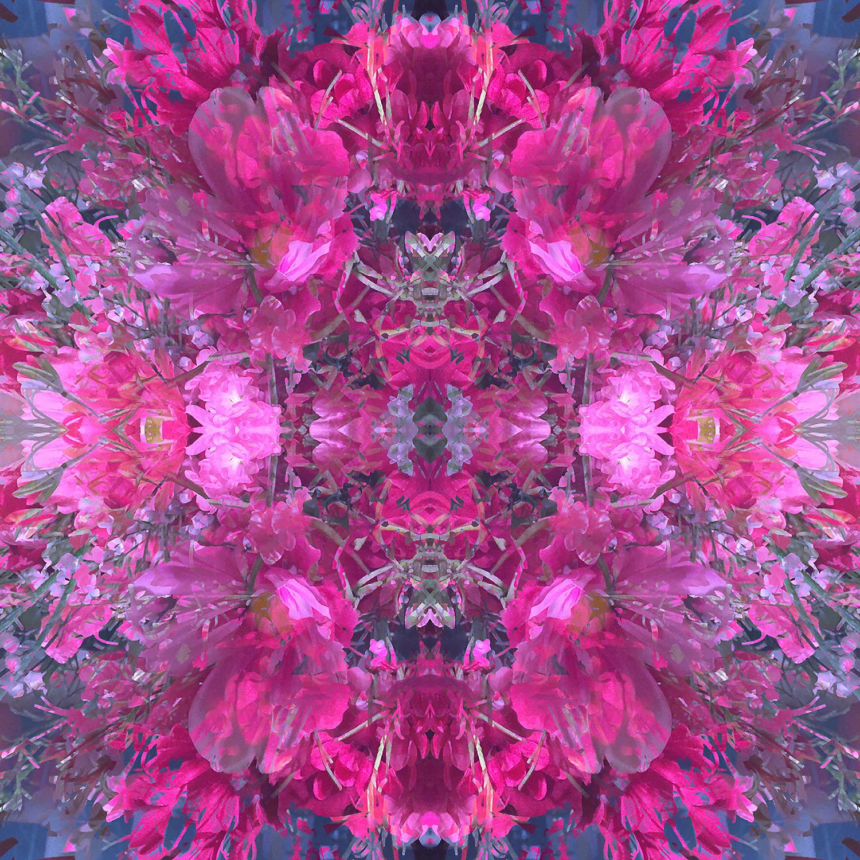Bouquet | Fuschia Fantasy