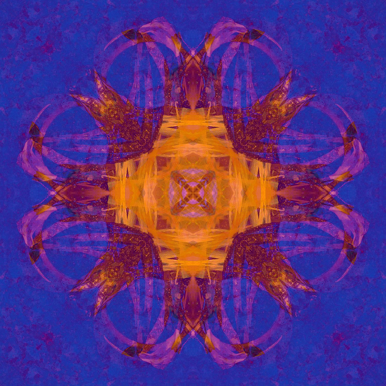 Asiatic Lily Petals | Bound In Orange 1500.jpg