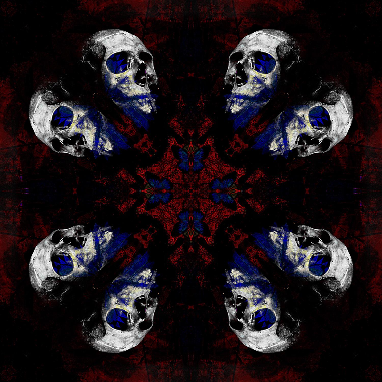 Grasshopper Pegasus Skulls | Papillon Skulls 1500.jpg