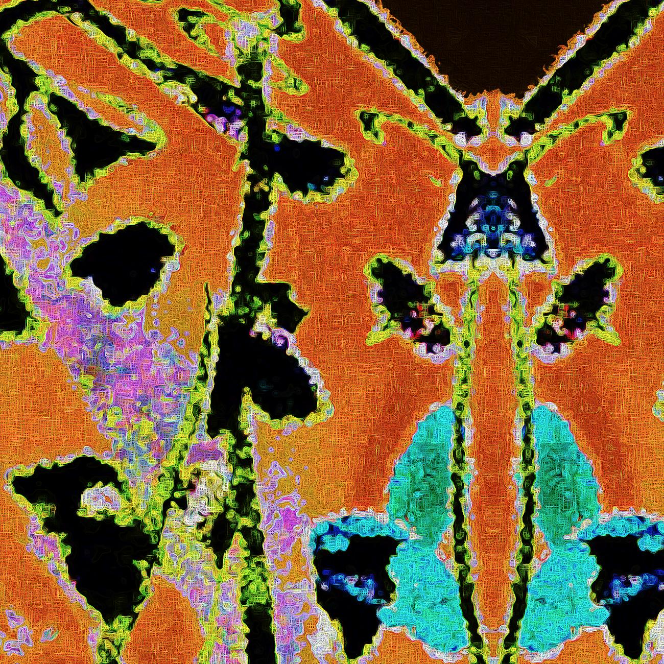 Leopard Moth | Frenzied Detail