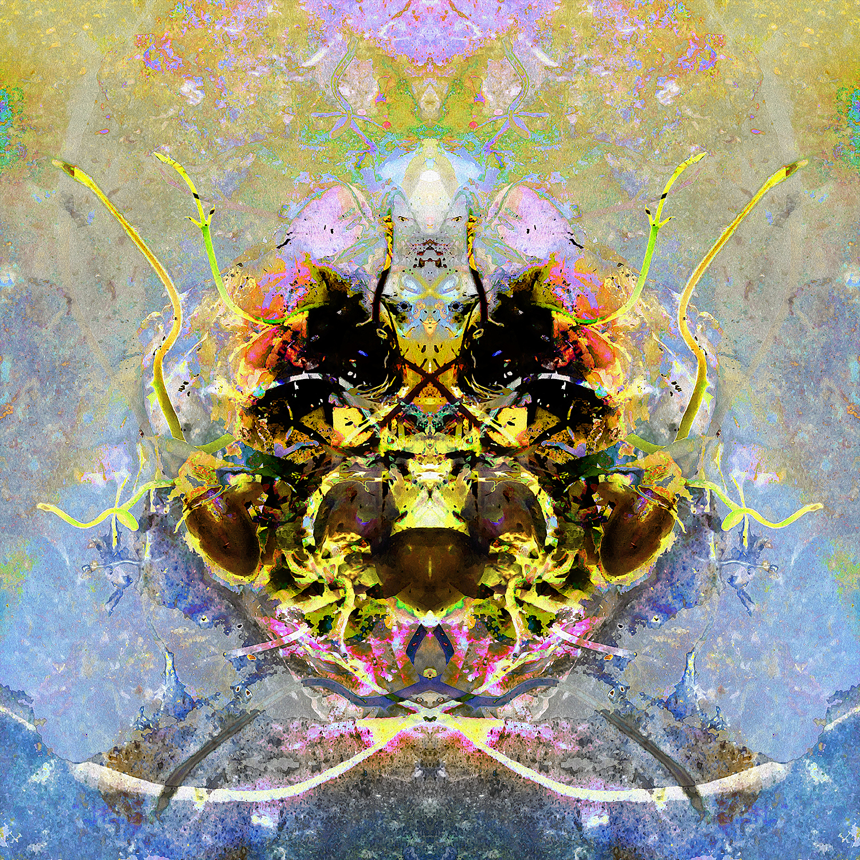 Lychee Seed | Alien.jpg