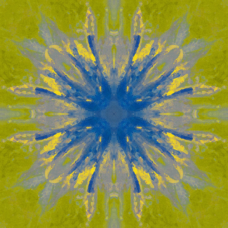 Canna Blossom | Blue Star Expansion 1500.jpg